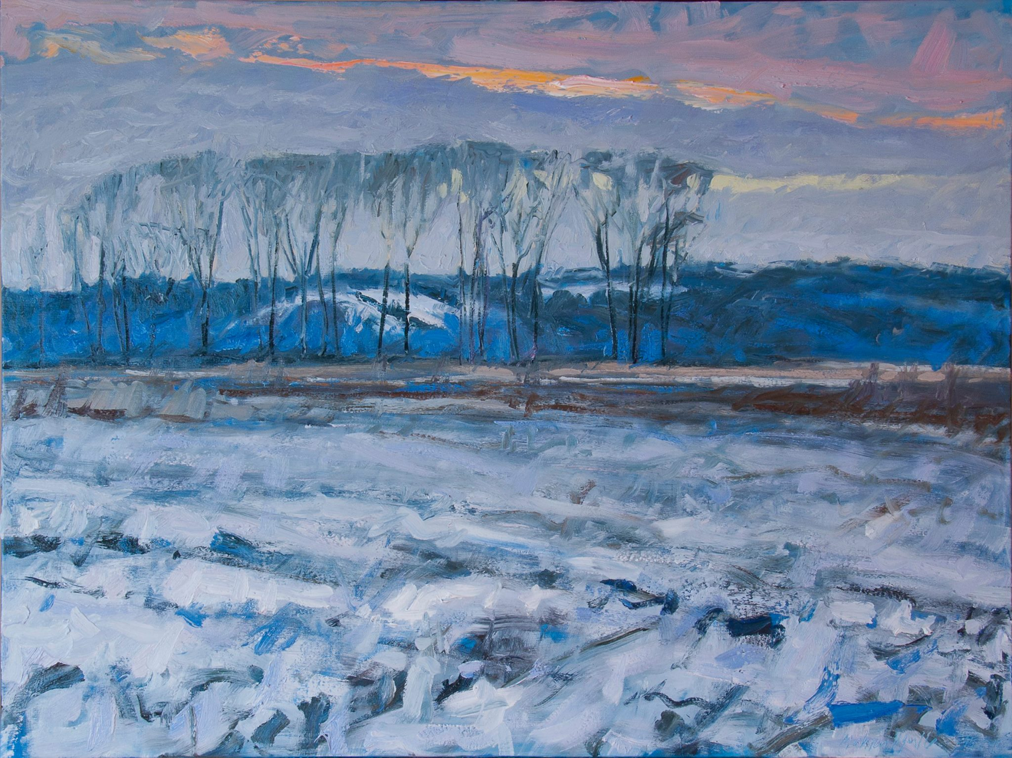 Oil Painting Winter Sunset Looking North, Cottonwood Grove